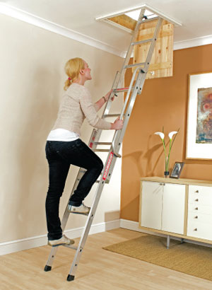 Basic Loft Ladder