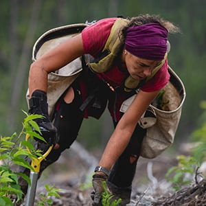 Woman working in forest