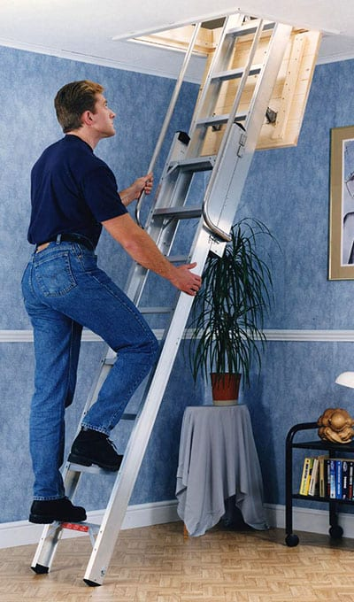 deluxe 2 section ladder